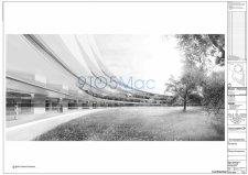 campus-2-cupertino-apple-image-interieur-exterieur-batiment-5