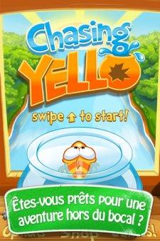 Chasing Yello 1