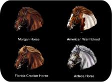 chevaux-six-guns-gameloft-iphone-ipad-ipod-touch-ios-01