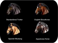chevaux-six-guns-gameloft-iphone-ipad-ipod-touch-ios-02