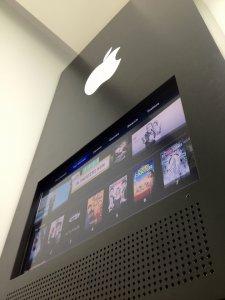faux-apple-store-replique-par-un-fan-chinois-david-wu-2