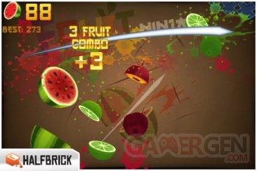 fruits ninja 2