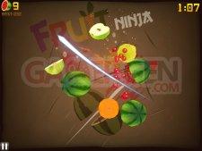 Images-Screenshots-Captures-Fruit-Ninja-HD-iPad-24112010
