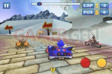 Images-Screenshots-Captures-sonic-sega-all-stars-racing-480x320-01032011-04