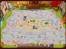 Images-Screenshots-Captures-Zen-Puzzle-Garden-24112010-06