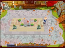 Images-Screenshots-Captures-Zen-Puzzle-Garden-24112010-07