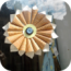 iorigami-pro-logo-icone