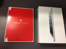 iPad mini  (10)