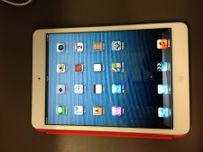 iPad mini  (11)