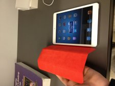 iPad mini  (8)