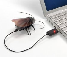 roachbot-cafard-telecommandé-ipad-iphone-ipod-2